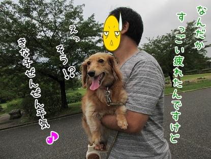 kinako5570.jpg