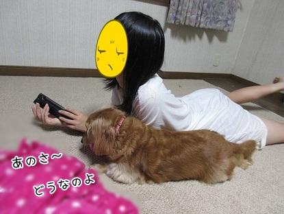 kinako5615.jpg