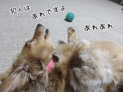 kinako5635.jpg