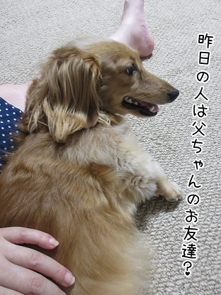 kinako5638.jpg