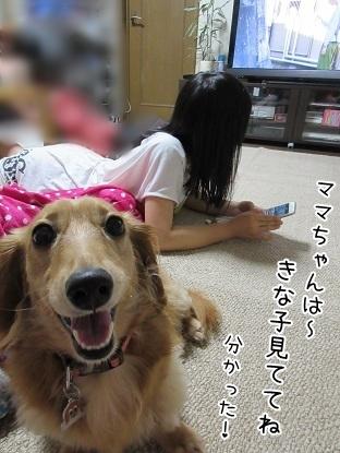 kinako5648.jpg