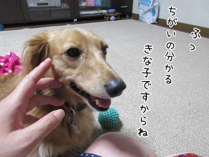 kinako5661.jpg