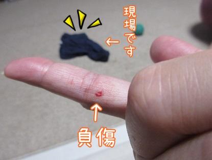 kinako5670.jpg