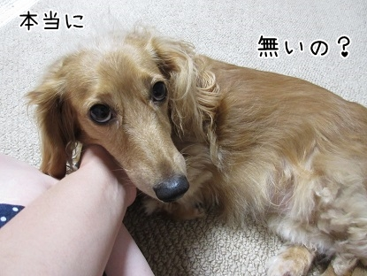 kinako5754.jpg