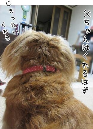 kinako5755.jpg