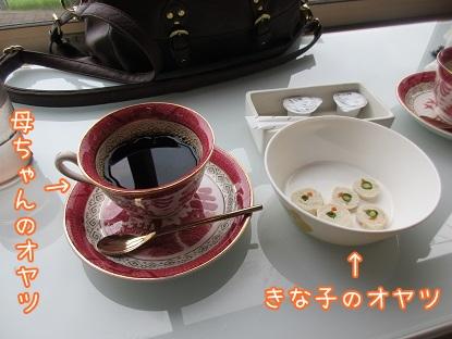 kinako5776.jpg