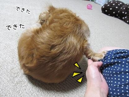 kinako5808.jpg