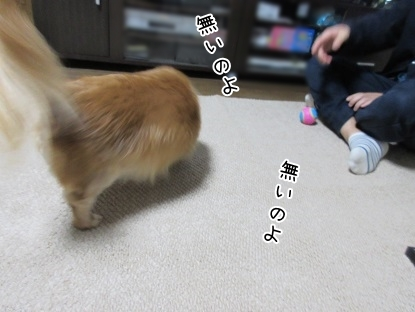 kinako5901.jpg