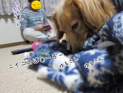 kinako5904.jpg