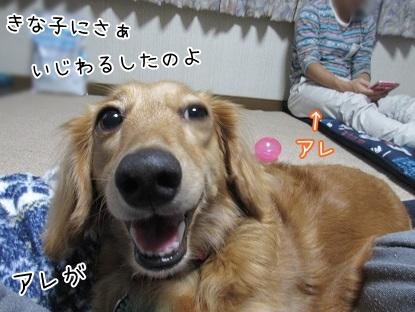 kinako5905.jpg