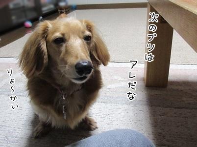 kinako5949.jpg