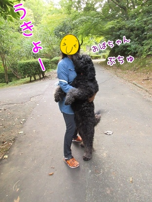 kinako5956.jpg