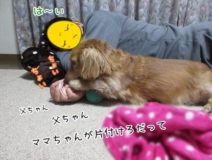 kinako5970.jpg