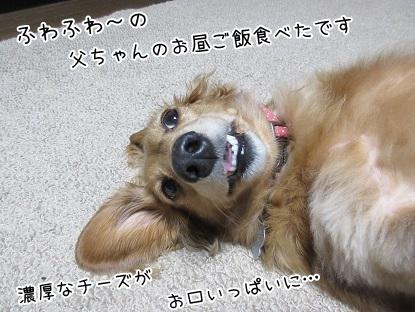 kinako5991.jpg