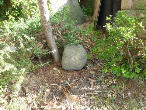 熊本地震の影響(4)