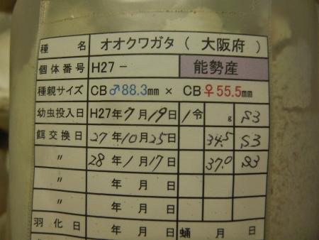 P1030421 (450x338)