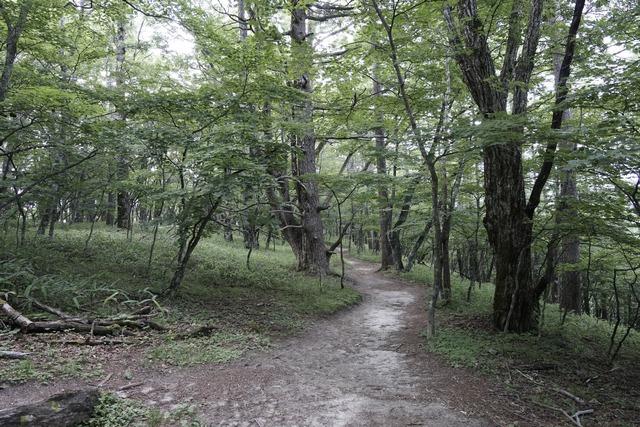 yamanashinaganonotabi 234m