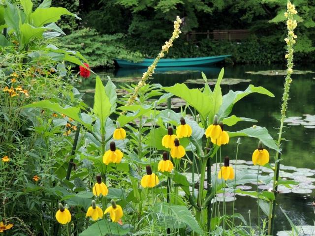 N8165モネの庭