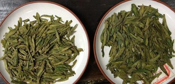 獅峰龍井茶