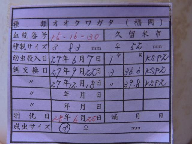 DSCN1369[1]
