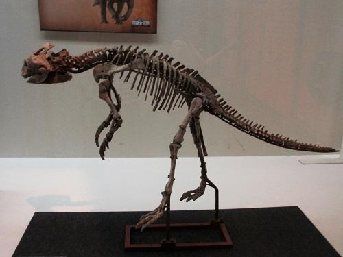 恐竜160802-2