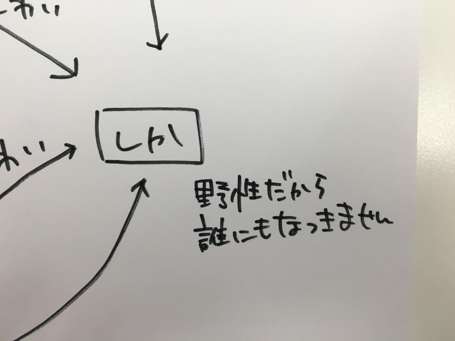 S__6864907.jpg