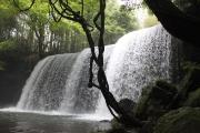 熊本のひんやりスポット☆小国町の鍋ヶ滝