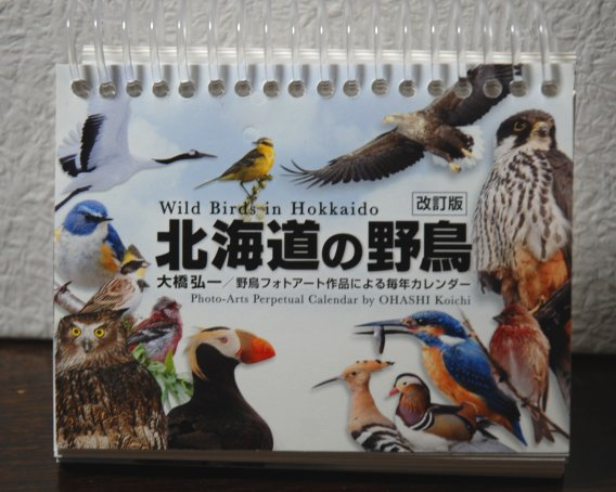 bird1-5_2016042119295619d.jpg