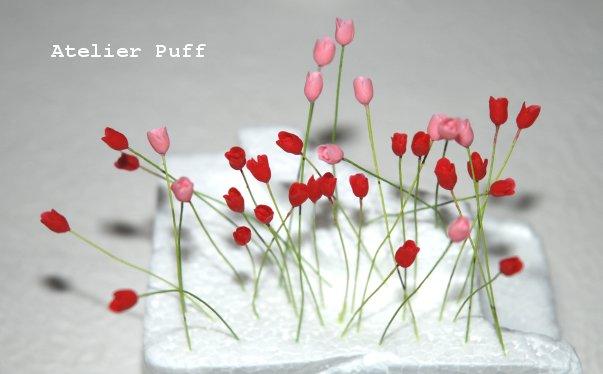 crayflower1-1.jpg
