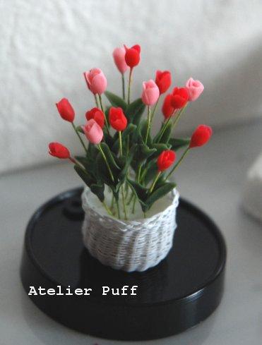 crayflower1-2.jpg