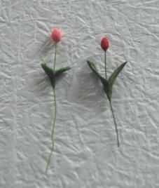 crayflower1-7.jpg