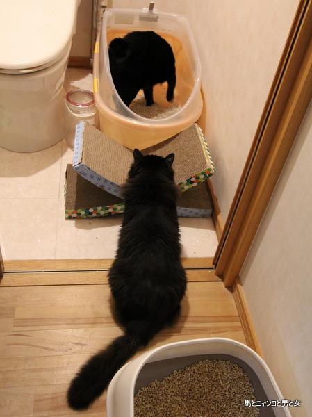 トイレの作法