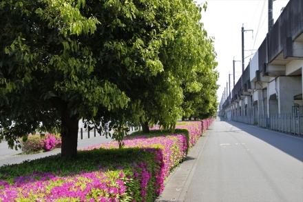 内宿駅高架