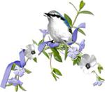 bird_20160928030511f6f.jpg