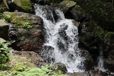 養老の滝 019a