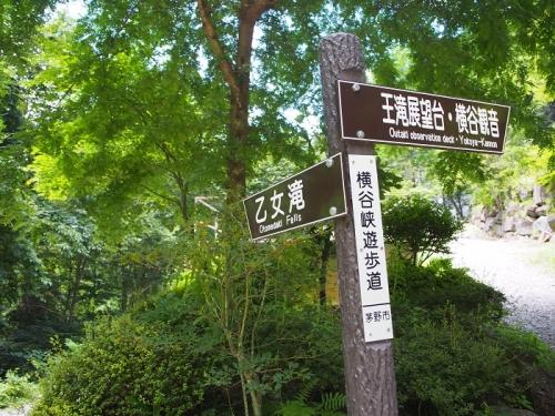 乙女の滝(7)