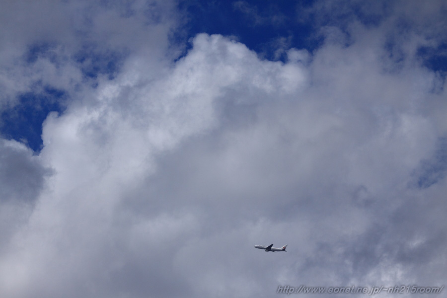 JAL B767-346ER / JA612J