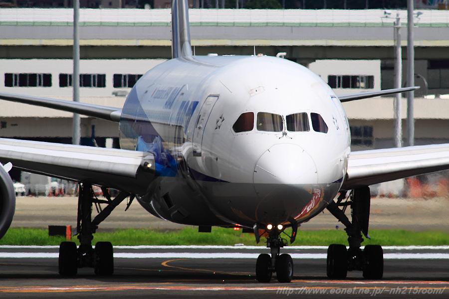 ANA B787-8 / JA809A