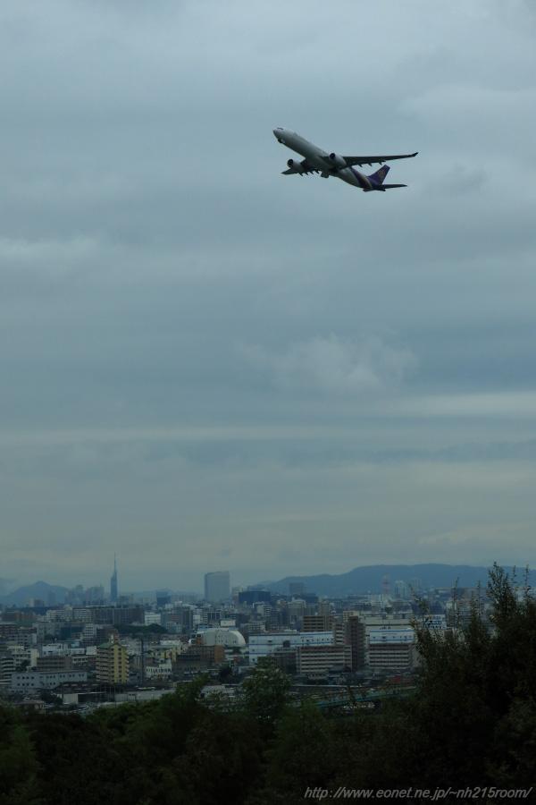 THA A330-300@福岡空港南東部某所