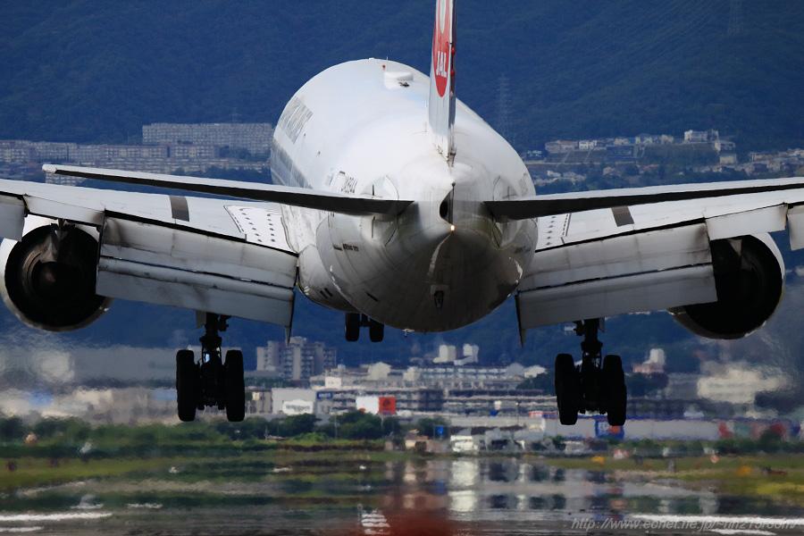 JAL B777-346 / JA8944@RWY32Lエンド・千里川土手