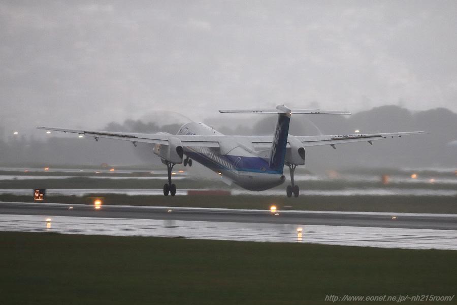 ANA WINGS DHC-8-402Q / JA845A@伊丹スカイパーク南駐車場