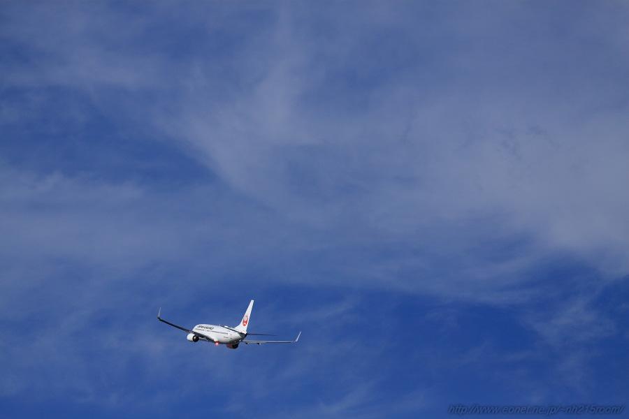 JAL B737-846 / JA322J@RWY14Rエンド・伊丹リサイクルセンター周辺