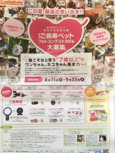 fc2blog_201608171053573f6.jpg
