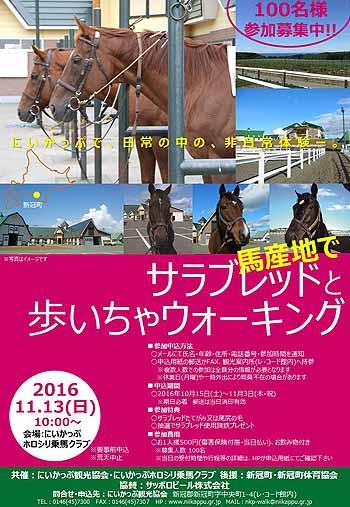 20161016_馬とふれあいウォーキングチラシデータ(オモテ)