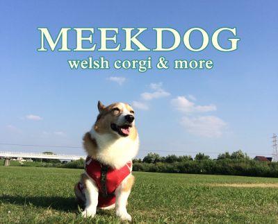 meekdogss400.jpg