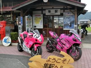 ピンクの隼2台