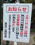 2016・04・05夙川4