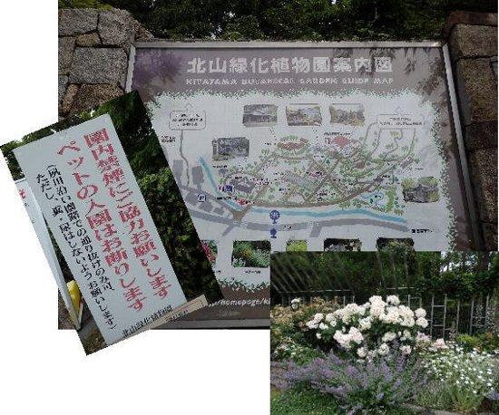 2016・06・04北山植物園1