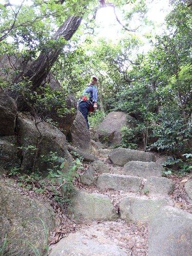 2016・06・04北山植物園3