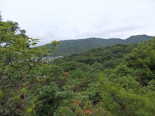 2016・06・04北山植物園4